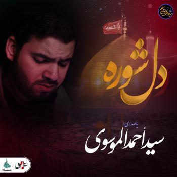 شب های دلتنگی | دل شوره | سید احمد الموسوی