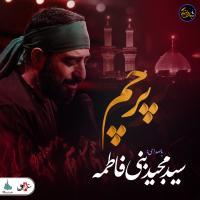 شب های دلتنگی | پرچم | سید مجید بنی فاطمه