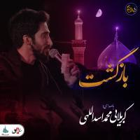 ویدئو شب های دلتنگی | بازگشت | کربلایی محمد اسدالهی