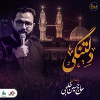 شب های دلتنگی | دلتنگی | حاج حسین خلجی