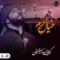 ویدیو شب های دلتنگی | خیال حرم | کربلایی سید امیر حسینی