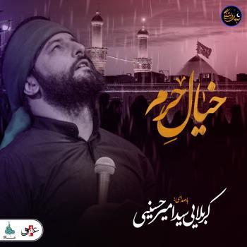 شب های دلتنگی | خیال حرم | سید امیر حسینی