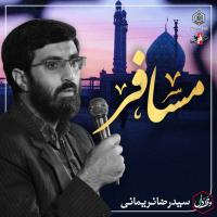 ویدئو وقف دل | مسافر | کربلایی سید رضا نریمانی
