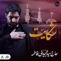 شب های دلتنگی | شکایت | حاج سید مجید بنی فاطمه
