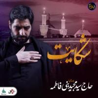 ویدئو شب های دلتنگی |شکایت | حاج سید مجید بنی فاطمه