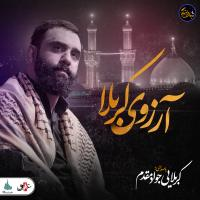 ویدئو شب های دلتنگی | آرزوی کربلا | کربلایی جواد مقدم