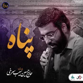 ویدئو شب های دلتنگی | پناه | حاج حسین سیب سرخی