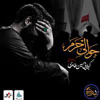 ویدئو شب های دلتنگی حوالی حرم حسین طاهری