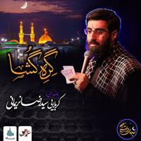 ویدئو شب های دلتنگی گره گشا سیدرضانریمانی