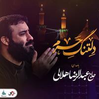 شب های دلتنگی | دلتنگ حرم | حاج عبدالرضا هلالی